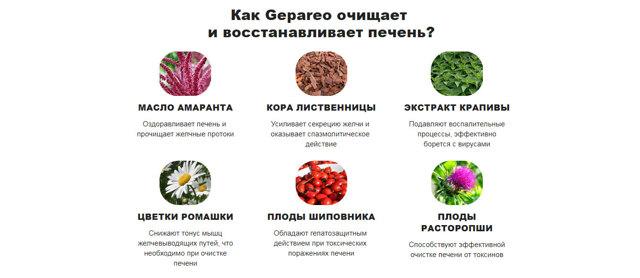 Помогает ли Gepareo при лечении заболеваний печени?